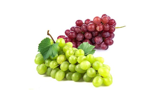 ico winogrona