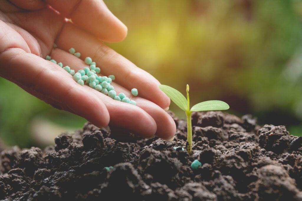 nawozy ogrodnicze porady