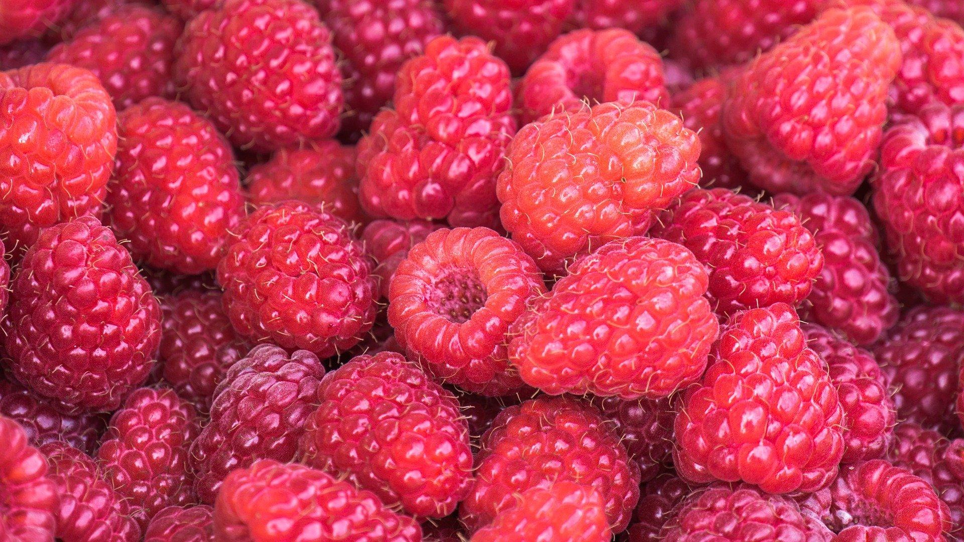 raspberries 3583005 1920